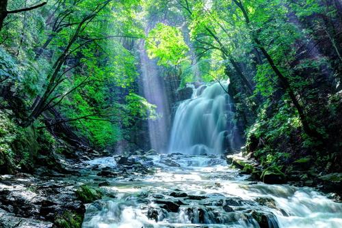 滝風(たき)イオンメディックイメージ
